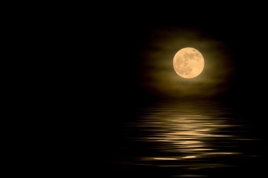 Luna manada